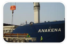 Marsa United Shipping Agency